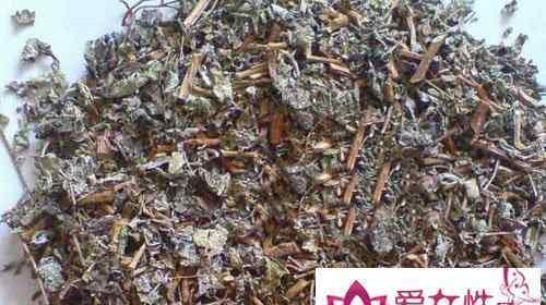 溪黄草的副作用 溪黄草的作用和副作用