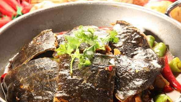 甲鱼的营养价值及功效 甲鱼的营养价值