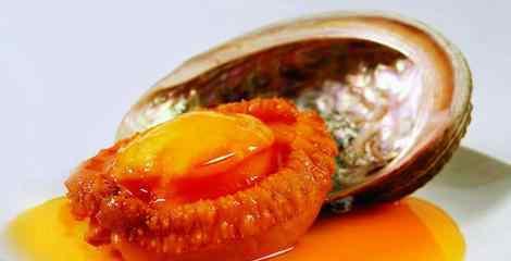 鲍鱼的功效及禁忌 新鲜鲍鱼的营养价值及功效 新鲜鲍鱼的食用方法