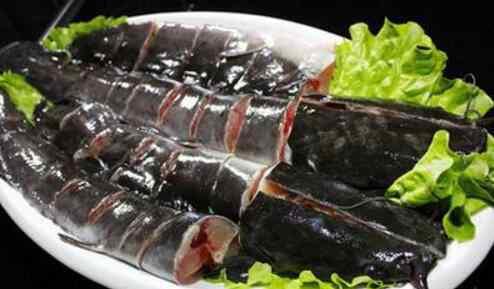 梭边鱼 梭边鱼和鲶鱼的区别有哪些 吃梭边鱼对身体有害吗