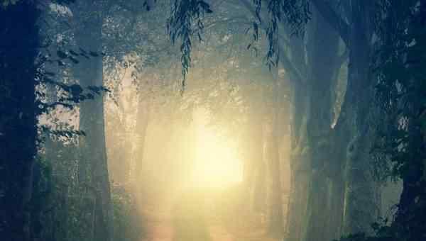 勿以善小而不为是谁的名言 勿以恶小而为之,勿以善小而不为的主人公是谁