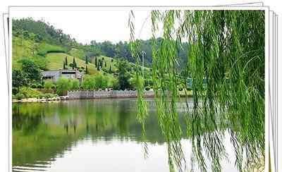 中国长寿之乡排名第一 中国最美的十大长寿之乡