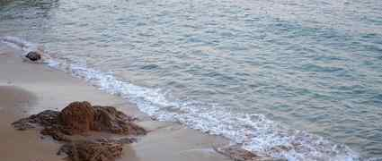 独自在夜晚的海边 《独自在夜晚的海边》好看吗?经典观后感锦集