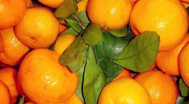 橘子是酸性还是碱性 桔子是酸性食物吗 桔子是酸性的吗