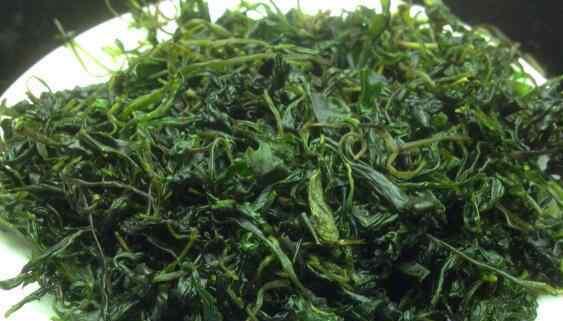 毛冬青茶的功效与作用 毛冬青茶的功效与作用 毛冬青茶的禁忌