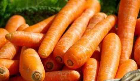 胡萝卜对眼睛的好处 胡萝卜的功效与作用