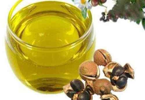 茶籽油的功效与作用 山茶籽油的功效与作用