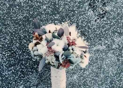 棉花花语 棉花的花语是什么 格桑花满天星紫罗兰的花语
