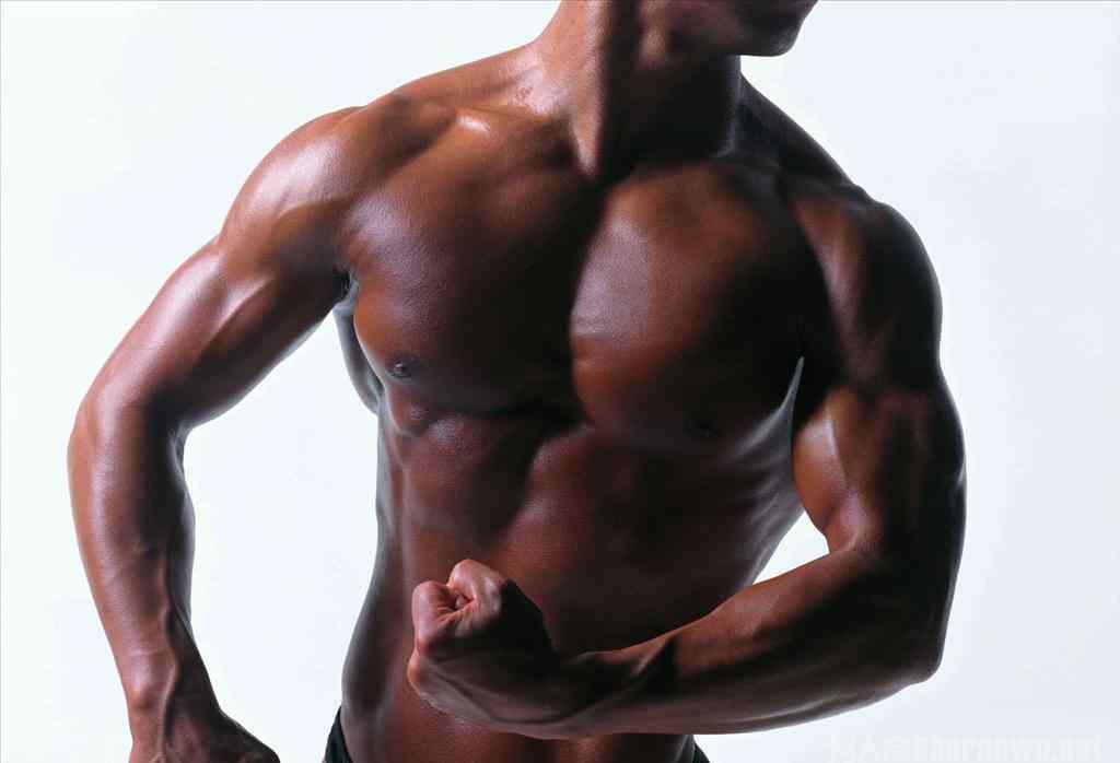 三角肌在哪 三角肌在哪 三角肌锻炼方法有哪些