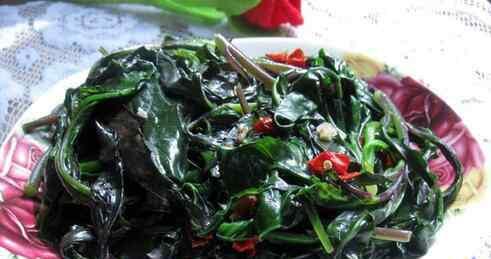 紫贝之家 紫背菜的功效与作用及食用方法
