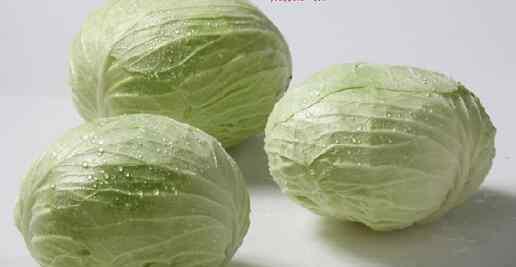 圆白菜的功效与作用 圆白菜的功效与作用