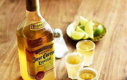 龙舌兰酒怎么喝 龙舌兰酒怎么喝 龙舌兰酒的正确喝法