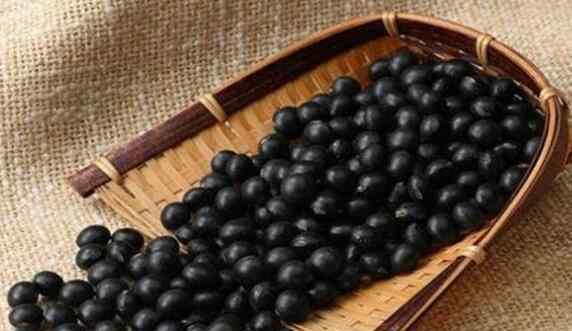 女人每天吃黑豆的好处 女人每天吃黑豆的好处与功效