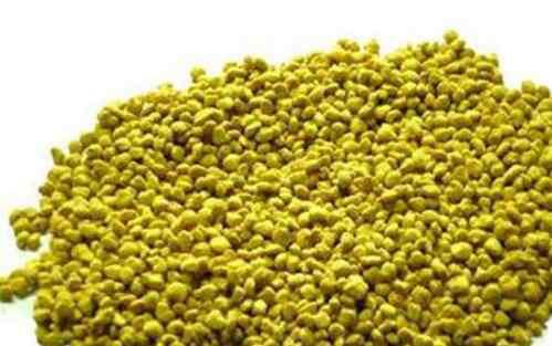 油菜花粉的功效 油菜花粉的功效与作用及食用方法