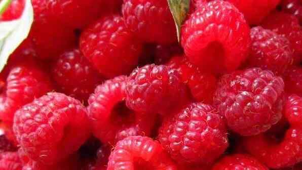 山莓 山莓和树莓的区别 山莓的功效与作用