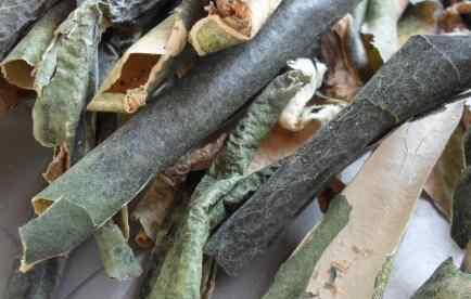 冬瓜皮的功效与作用 冬瓜皮的作用与功效 冬瓜皮的药用价值