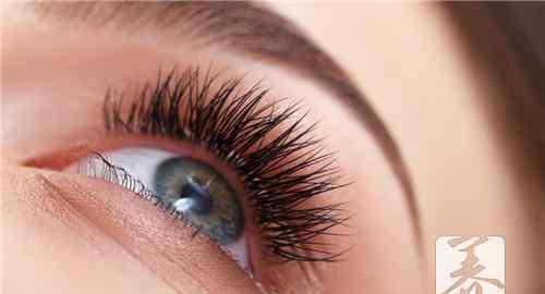 种睫毛能保持多久 种假睫毛能保持多久?