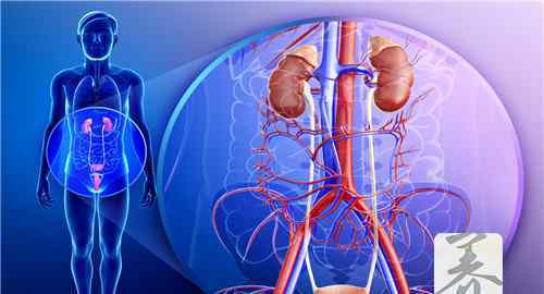 尿道炎反复发作怎么办 尿道炎反复发作怎么办