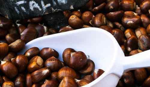 板栗壳 板栗壳可以做花肥吗 板栗壳怎么好剥