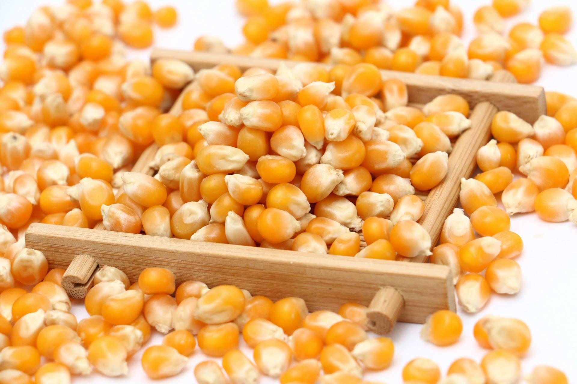 高压锅炸玉米花做法 随吃随做