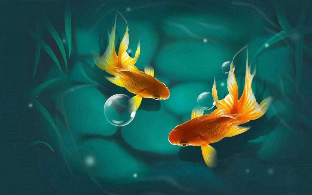 周公解梦梦见鱼 梦见鱼是什么意思