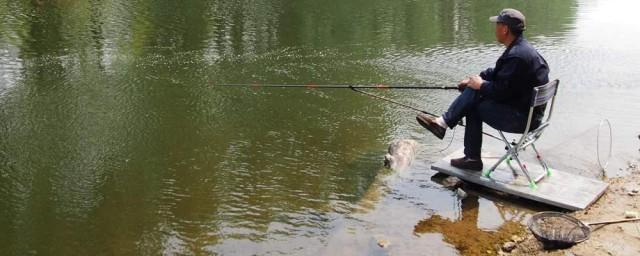 鱼钩的选择 如何选择鱼钩