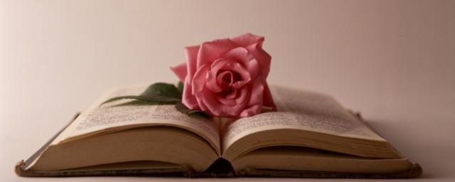 柳暗花明的诗句 带有柳暗花明的诗句