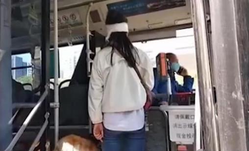 女子带导盲犬坐公交被赶下车 真实身份曝光令人意想不到