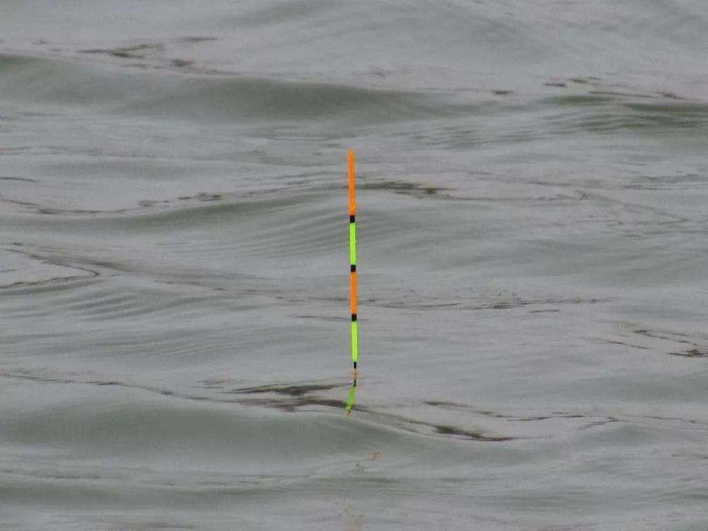 钓鱼漂怎么调 钓鱼漂的调法