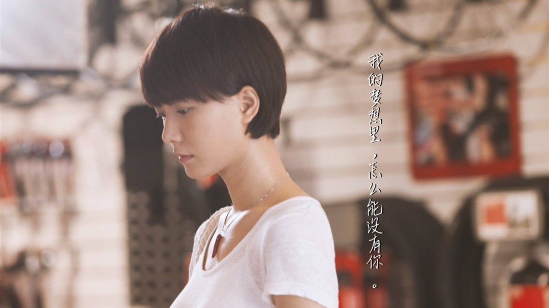 王璐丹所有主演的电视剧 这些她主演的电视剧您都看过吗