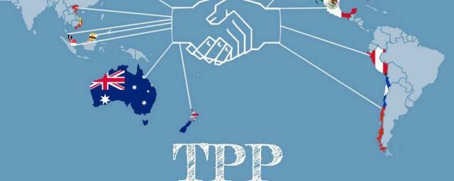 tpp是什么 TPP是什么意思