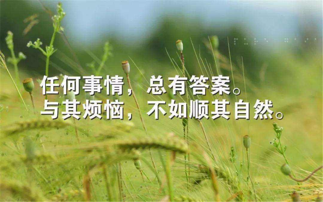 开心的句子说说心情 关于高兴心情的句子