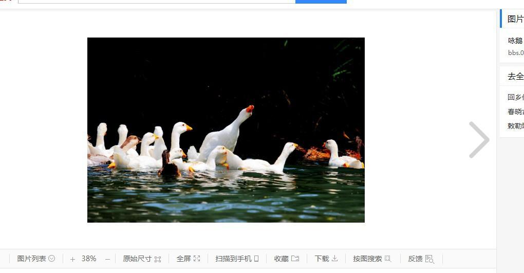 鹅鹅鹅的作者 古诗的简介