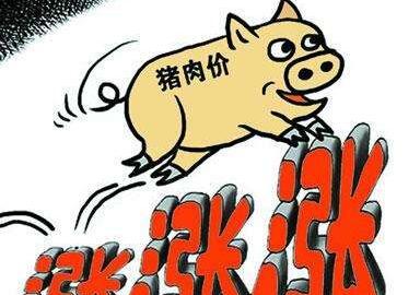 【热议】2019猪肉价历史最高 最近十年猪价走势图一览
