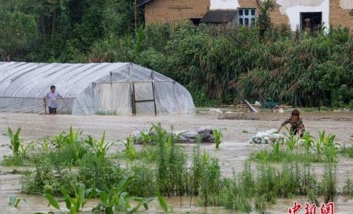 南方多省洪涝灾情严重:1192个县受灾186人死亡