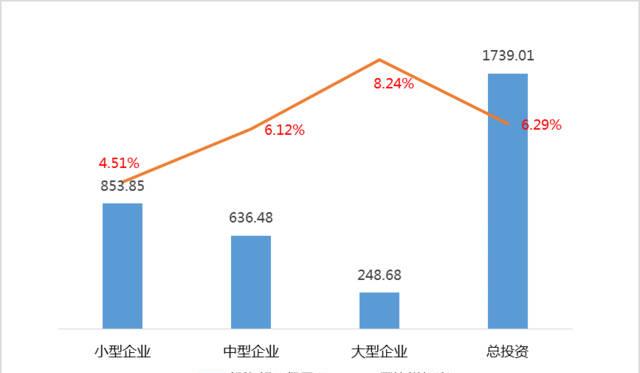 2015年中国人口普查