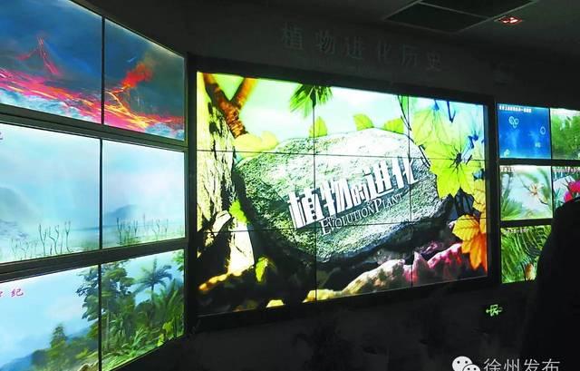 徐州植物园数字植物馆要开放啦!还有这些涨姿势的地方,一定要带孩子去