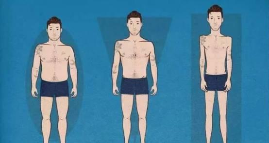 3种身体体型,如何科学的去健身塑形