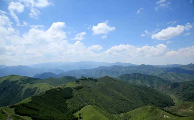 北京周边最美的山——西灵山,高山草甸花开