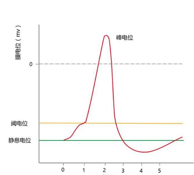 CASE-CONTROL研究中阈值效应及趋势检验