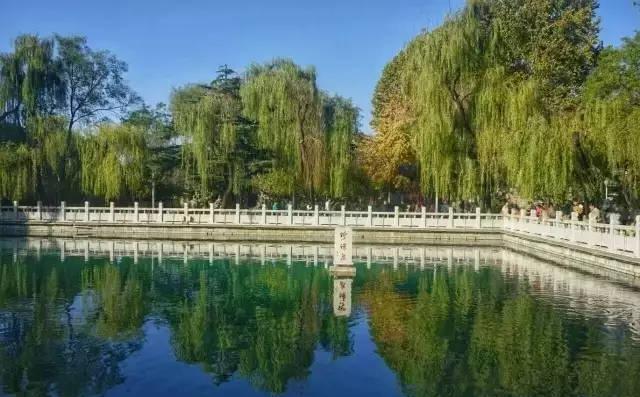 """济南的第三大名泉珍珠泉的""""前世今生"""""""