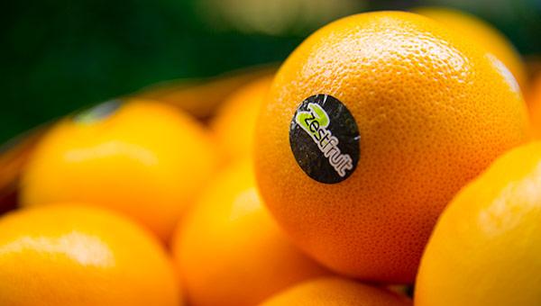 微博买橘子是什么梗 套路这么深跟不上网友的步伐了