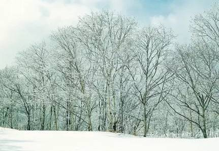 作文素材:描写冬天的好词好句及开头结尾
