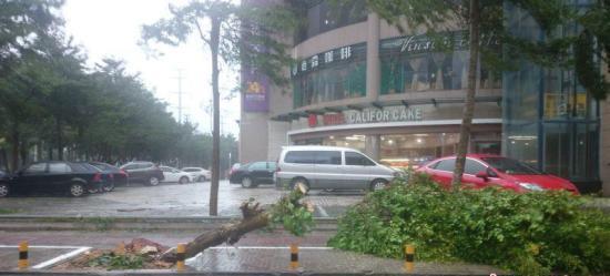 台风莎莉嘉在海南万宁市和乐镇登陆,中心附近最大风力14级