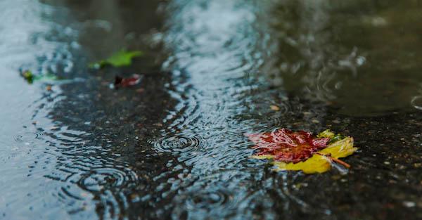 下雨天可以做哪些事情 有些事情是绝对不能做的
