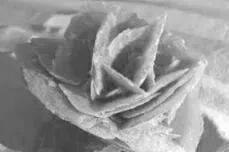 【每日一题】(326)沙漠玫瑰石