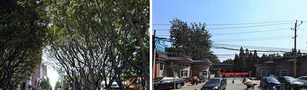 城市与健康|街道设计可以让生活更健康