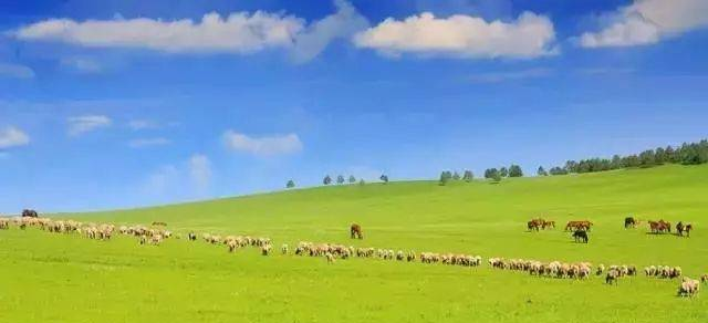 中国十大草原旅游景点排行