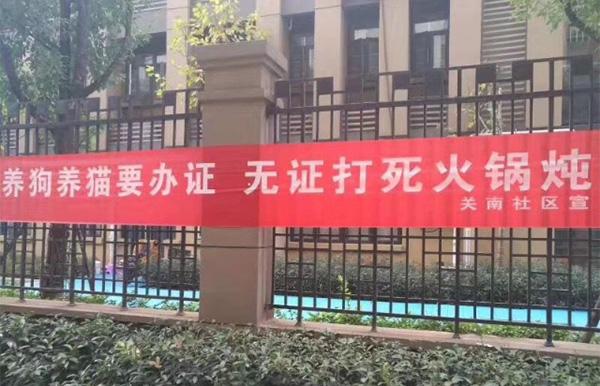 """武汉一社区挂猫狗""""无证打死火锅炖""""条幅?居委:物业冒名的"""