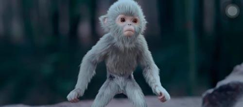 诛仙青云志三眼灵猴小灰解读 它到底是个什么物种